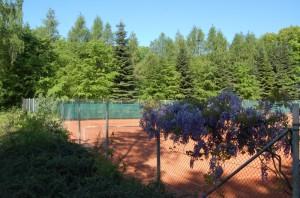 Tennisplatzanlage